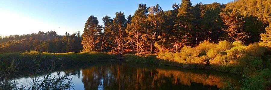 Broadhead Lake Sunset